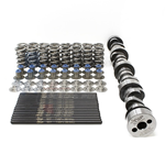 TSP LS3 Double Spring Camshaft Package